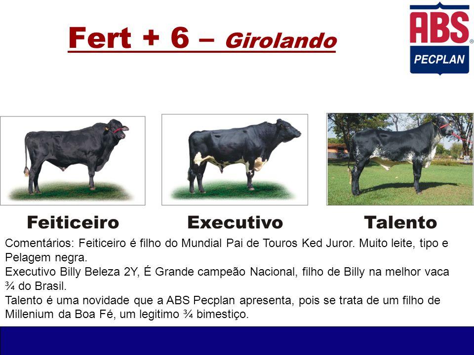 Fert + 6 – Girolando Comentários: Feiticeiro é filho do Mundial Pai de Touros Ked Juror. Muito leite, tipo e.