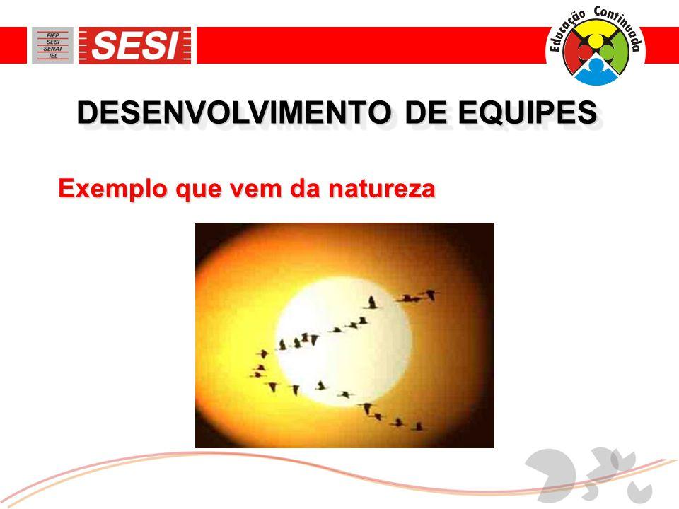 DESENVOLVIMENTO DE EQUIPES