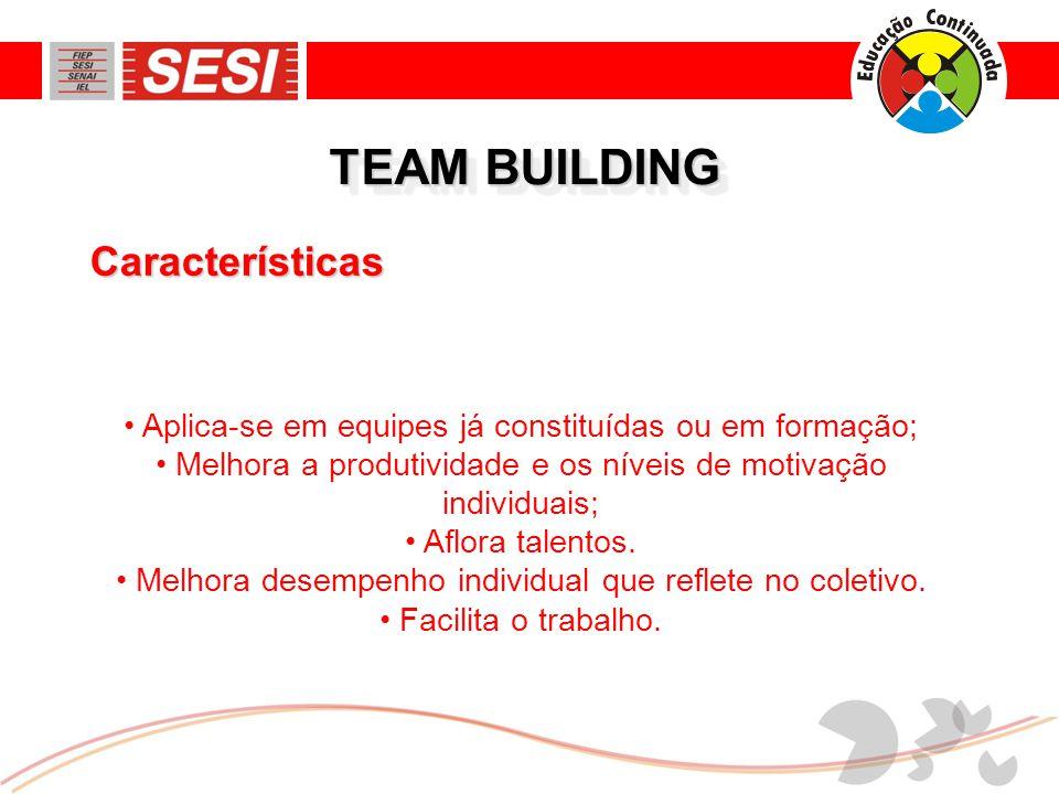 TEAM BUILDING Características