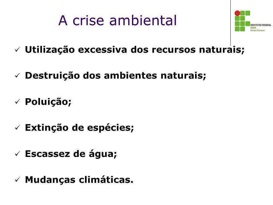 A crise ambiental Utilização excessiva dos recursos naturais;