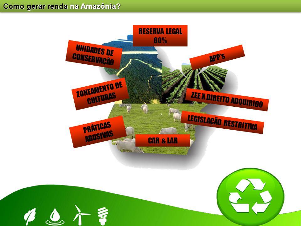Como gerar renda na Amazônia