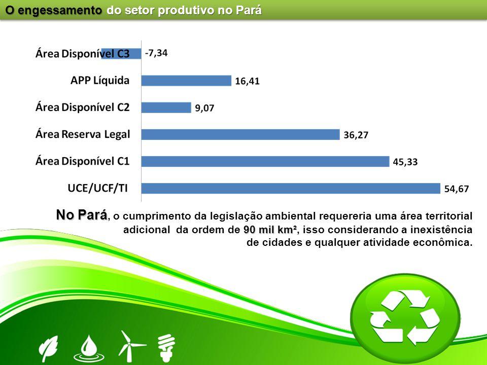O engessamento do setor produtivo no Pará