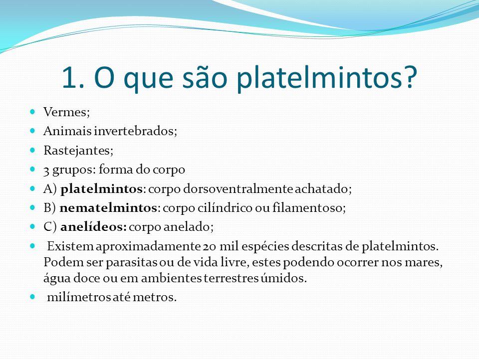 1. O que são platelmintos Vermes; Animais invertebrados; Rastejantes;