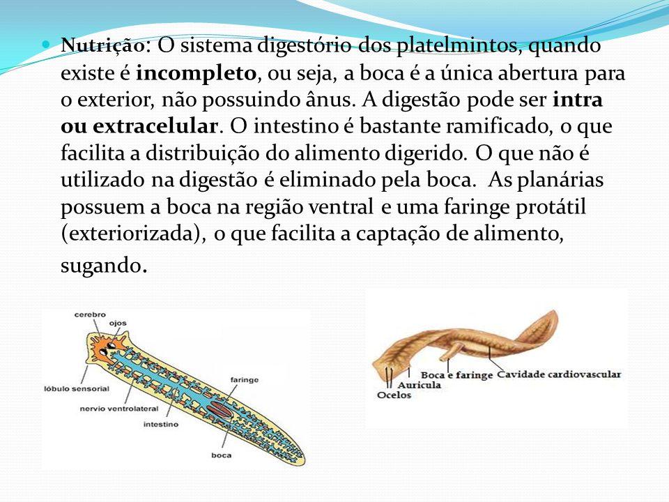 Nutrição: O sistema digestório dos platelmintos, quando existe é incompleto, ou seja, a boca é a única abertura para o exterior, não possuindo ânus.