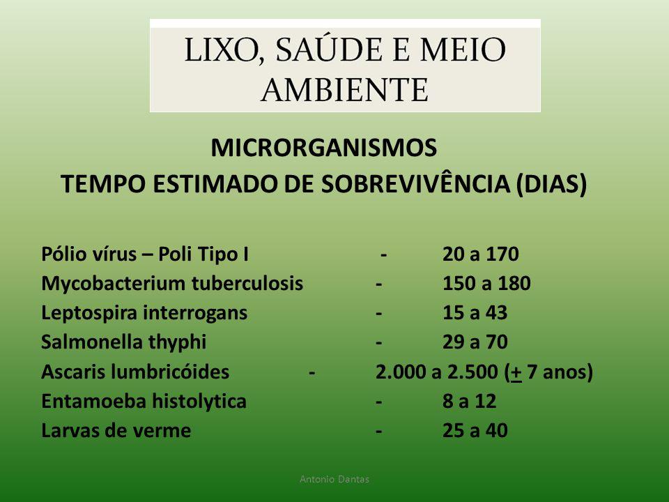 TEMPO ESTIMADO DE SOBREVIVÊNCIA (DIAS)