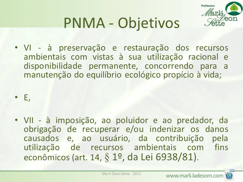 PNMA - Objetivos
