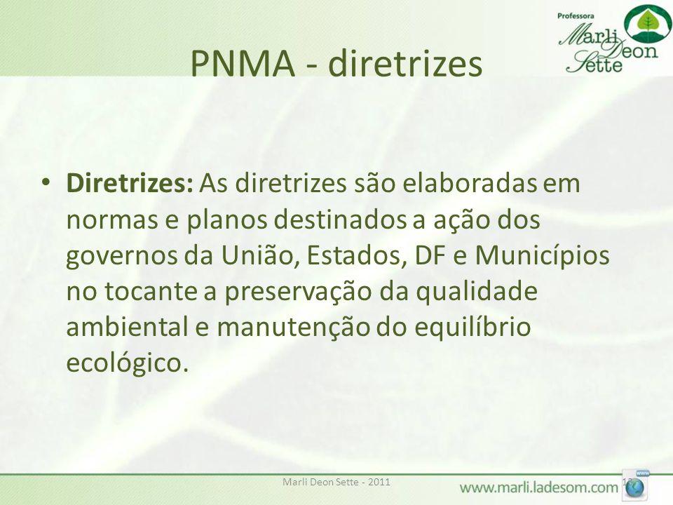 PNMA - diretrizes
