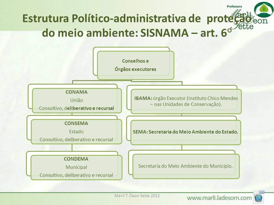 SEMA: Secretaria do Meio Ambiente do Estado.