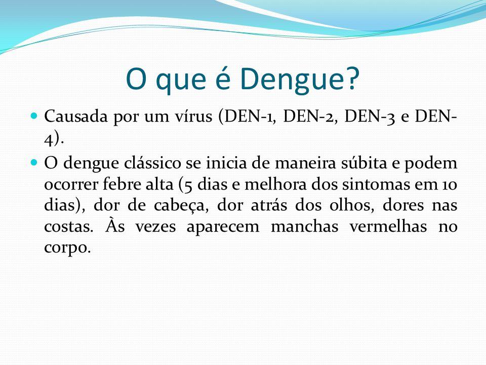 O que é Dengue Causada por um vírus (DEN-1, DEN-2, DEN-3 e DEN-4).