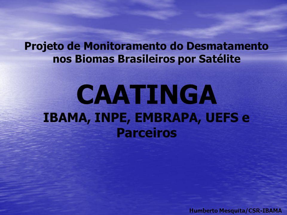 IBAMA, INPE, EMBRAPA, UEFS e Parceiros