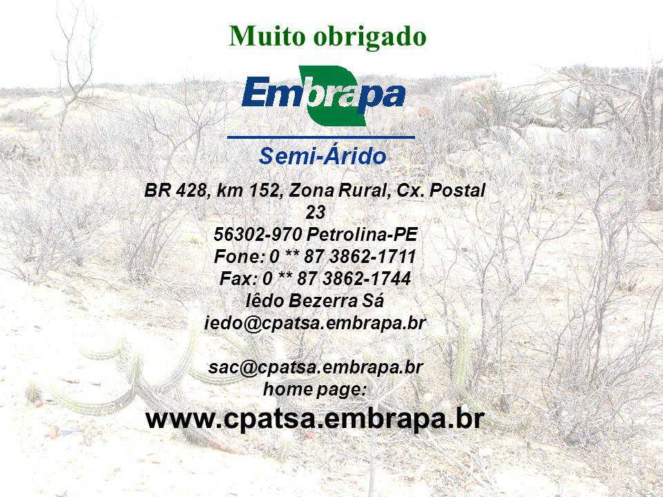 BR 428, km 152, Zona Rural, Cx. Postal 23
