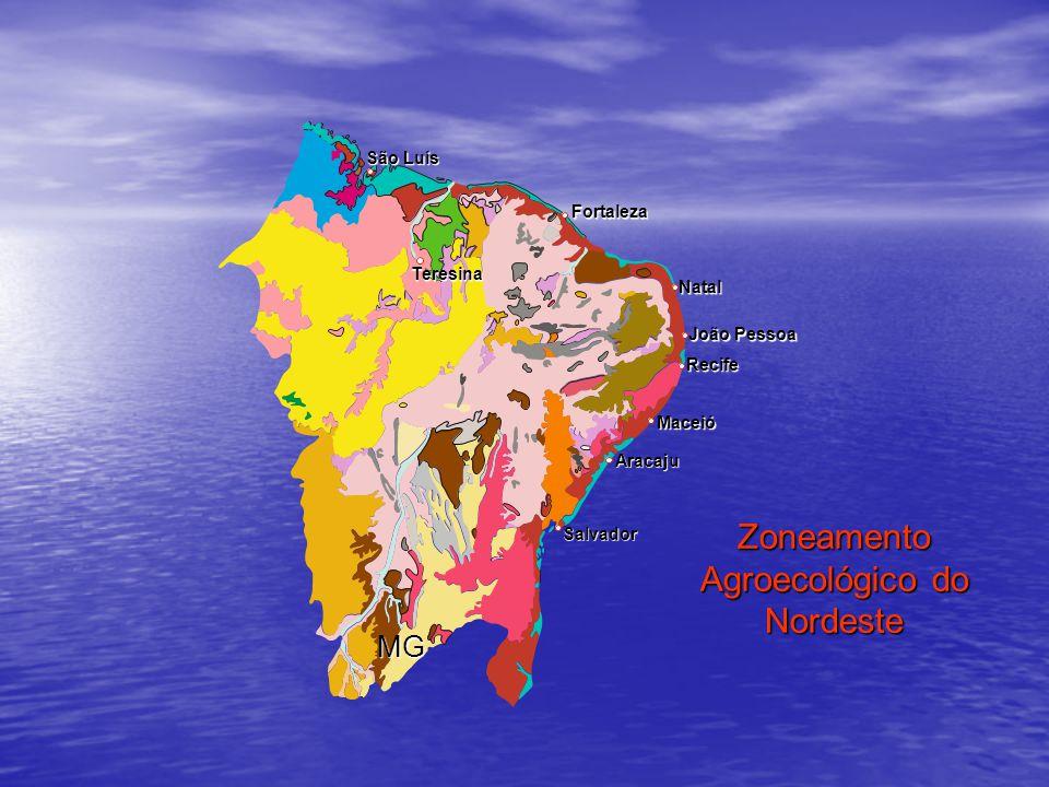 Zoneamento Agroecológico do Nordeste
