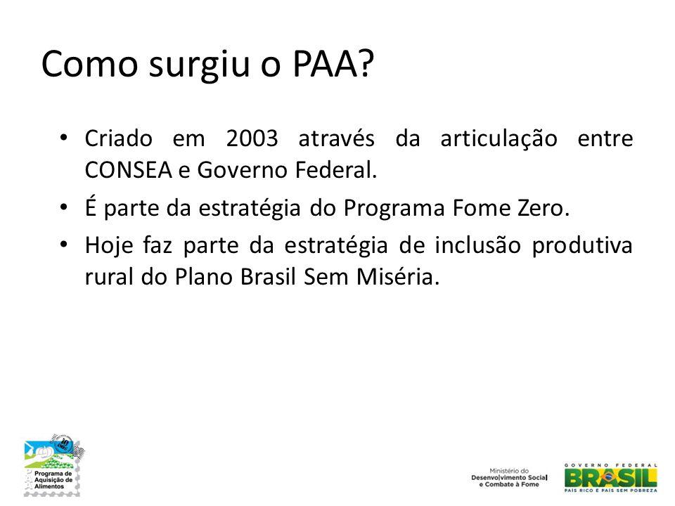Como surgiu o PAA Criado em 2003 através da articulação entre CONSEA e Governo Federal. É parte da estratégia do Programa Fome Zero.