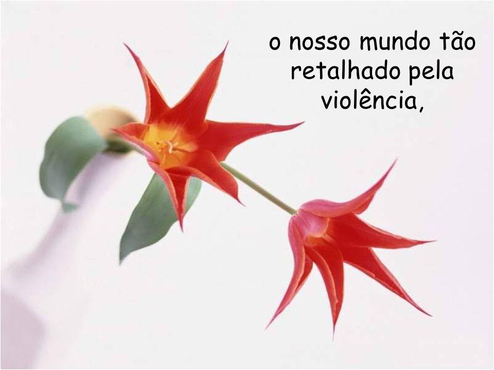 o nosso mundo tão retalhado pela violência,