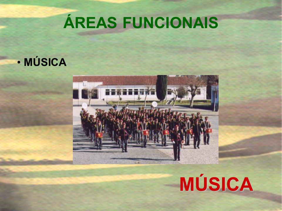 ÁREAS FUNCIONAIS MÚSICA MÚSICA