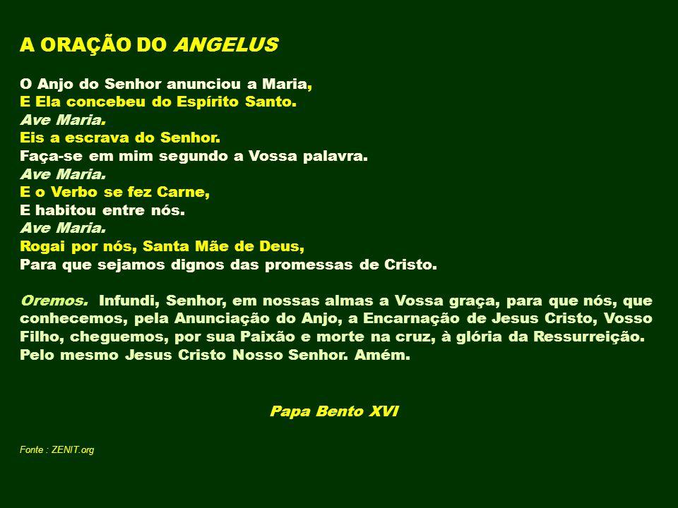 Papa Bento XVI Fonte : ZENIT.org
