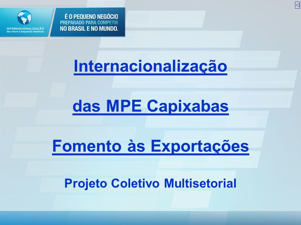 Internacionalização das MPE Capixabas Fomento às Exportações