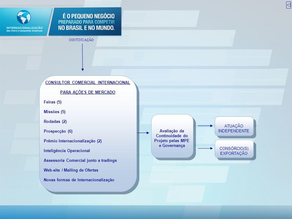 CONSULTOR COMERCIAL INTERNACIONAL PARA AÇÕES DE MERCADO Feiras (5)
