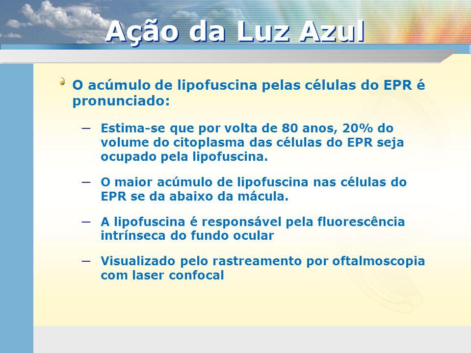 Ação da Luz Azul O acúmulo de lipofuscina pelas células do EPR é pronunciado: