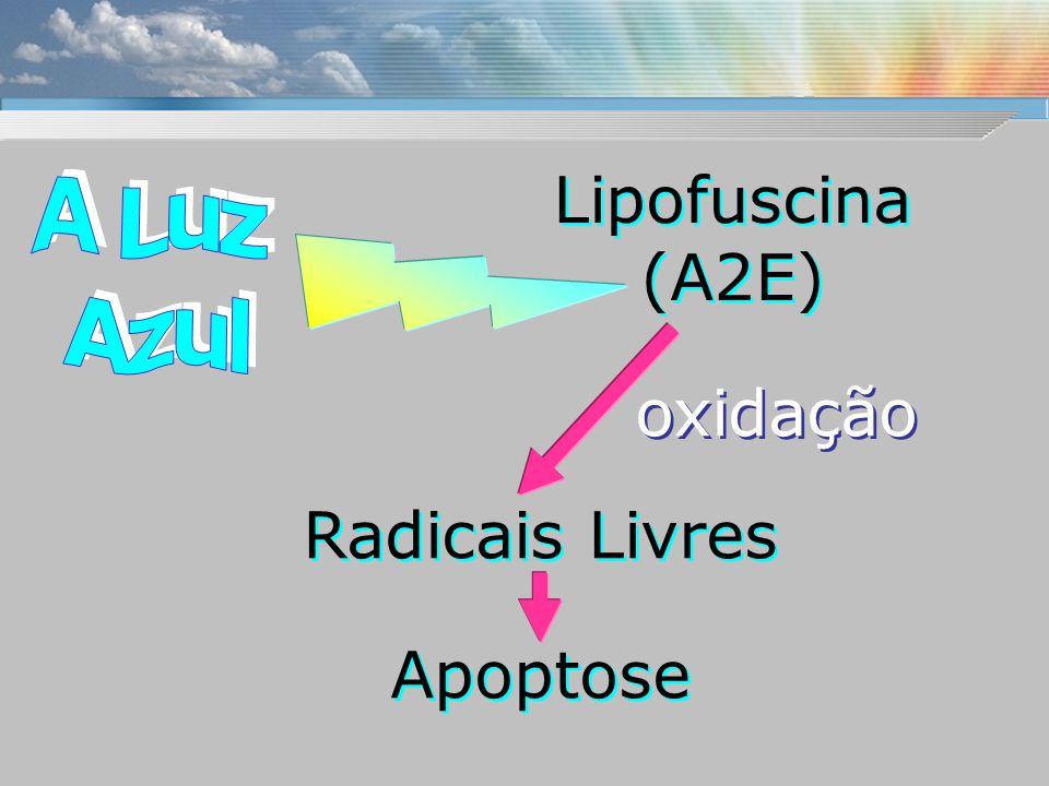 Lipofuscina (A2E) oxidação Radicais Livres Apoptose A Luz Azul