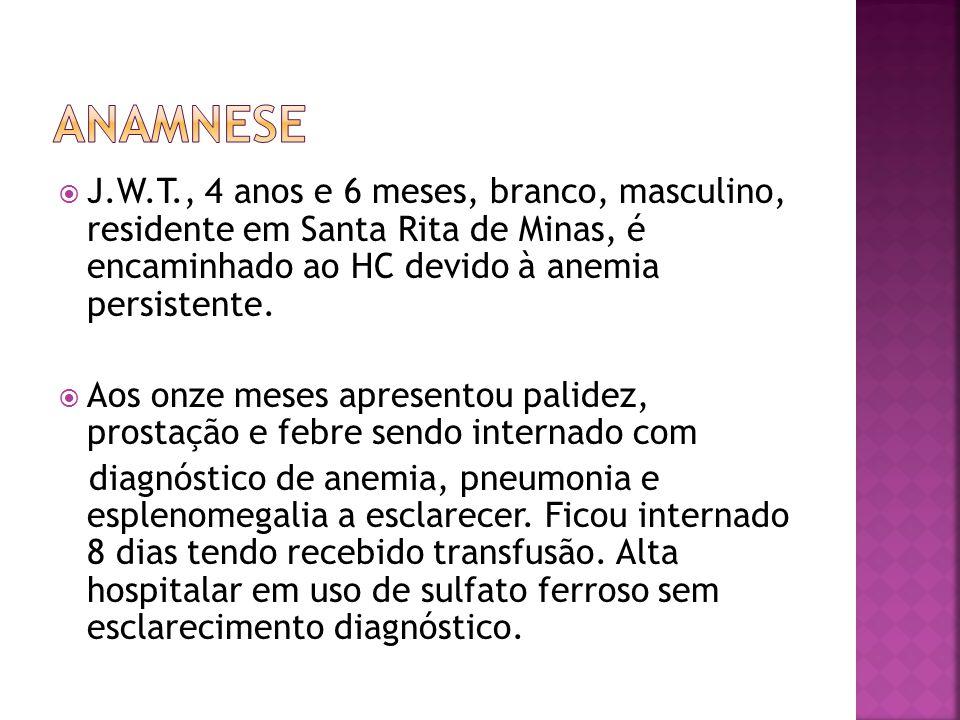 anamnese J.W.T., 4 anos e 6 meses, branco, masculino, residente em Santa Rita de Minas, é encaminhado ao HC devido à anemia persistente.
