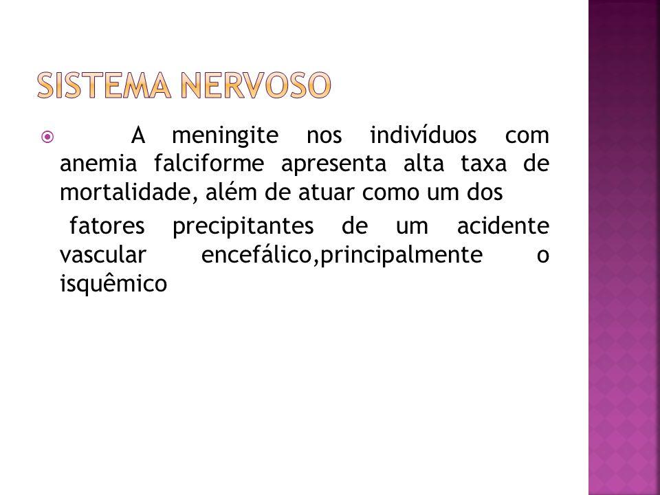 Sistema nervoso A meningite nos indivíduos com anemia falciforme apresenta alta taxa de mortalidade, além de atuar como um dos.