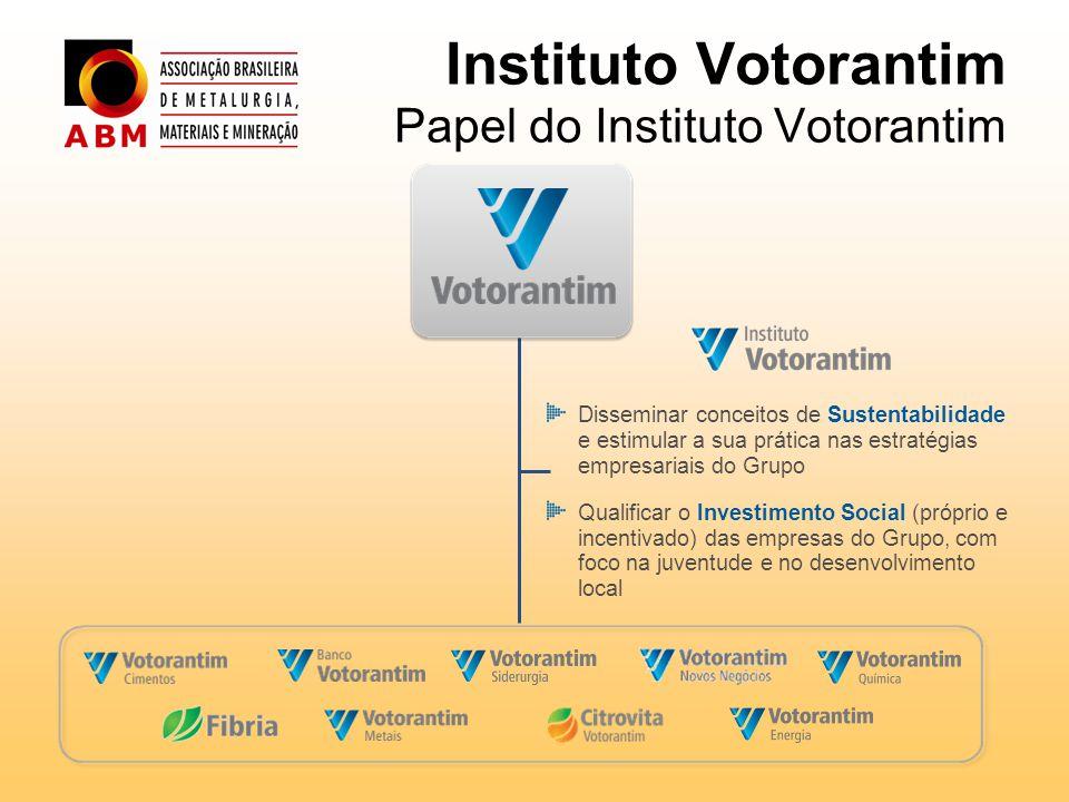 Instituto Votorantim Papel do Instituto Votorantim