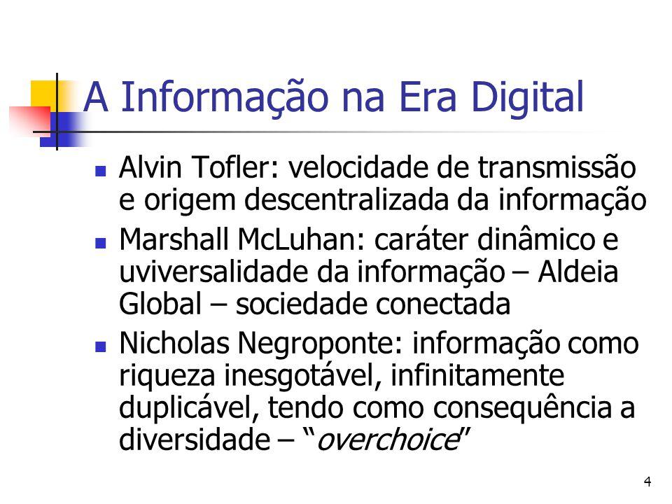 A Informação na Era Digital