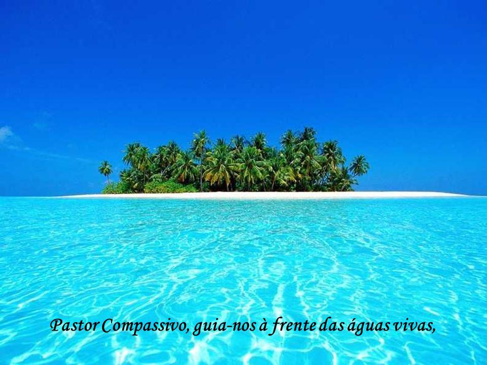 Pastor Compassivo, guia-nos à frente das águas vivas,
