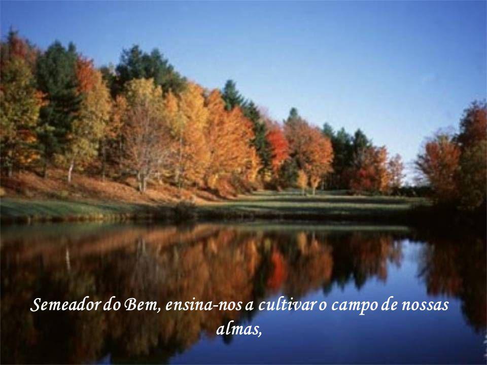 Semeador do Bem, ensina-nos a cultivar o campo de nossas almas,
