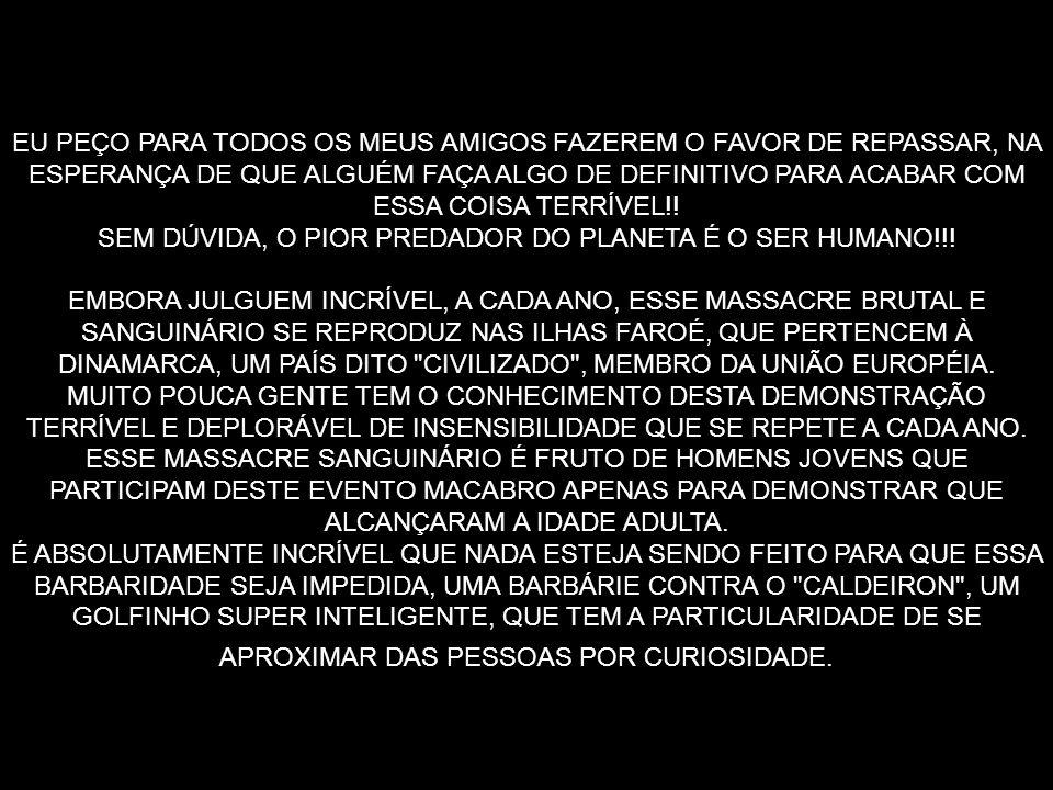 SEM DÚVIDA, O PIOR PREDADOR DO PLANETA É O SER HUMANO!!!