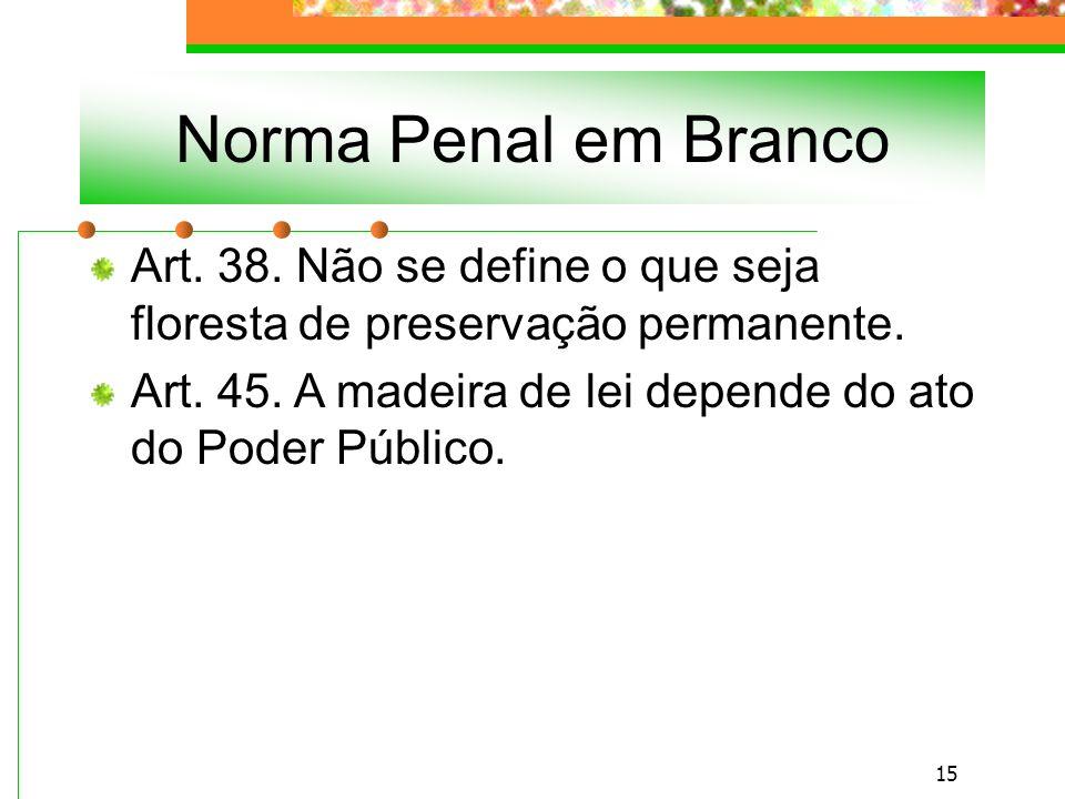 Norma Penal em Branco Art. 38. Não se define o que seja floresta de preservação permanente.