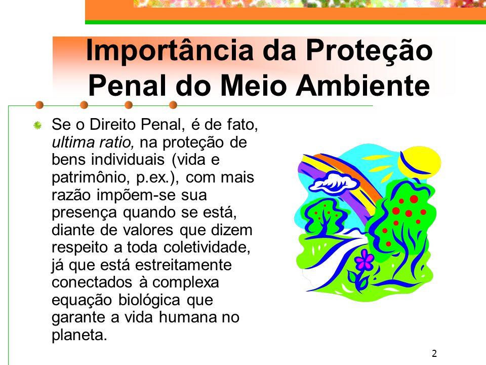 Importância da Proteção Penal do Meio Ambiente