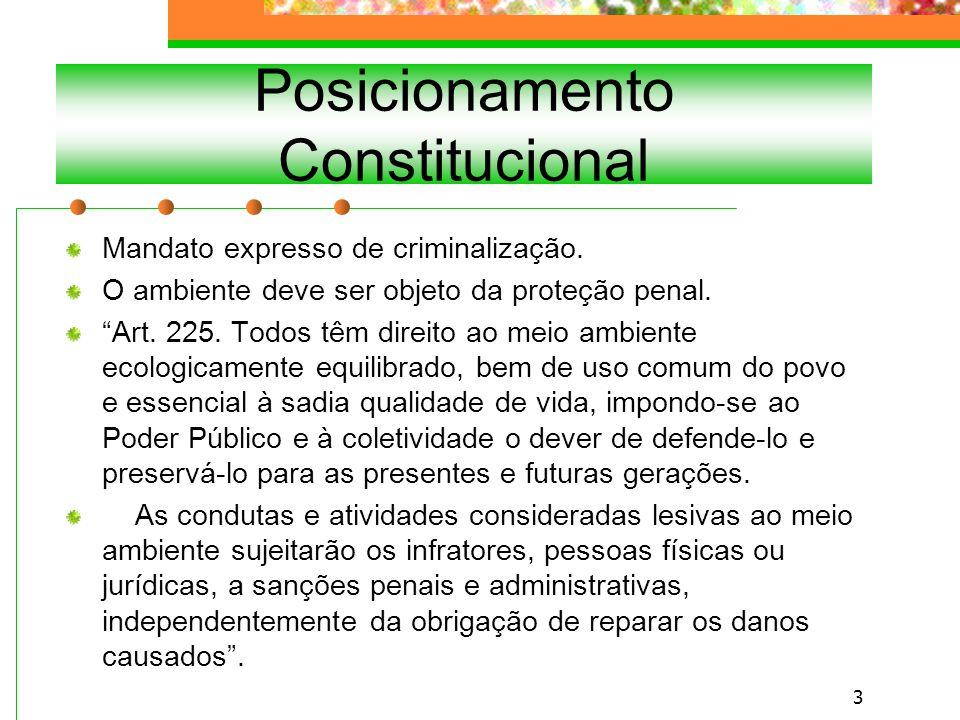 Posicionamento Constitucional