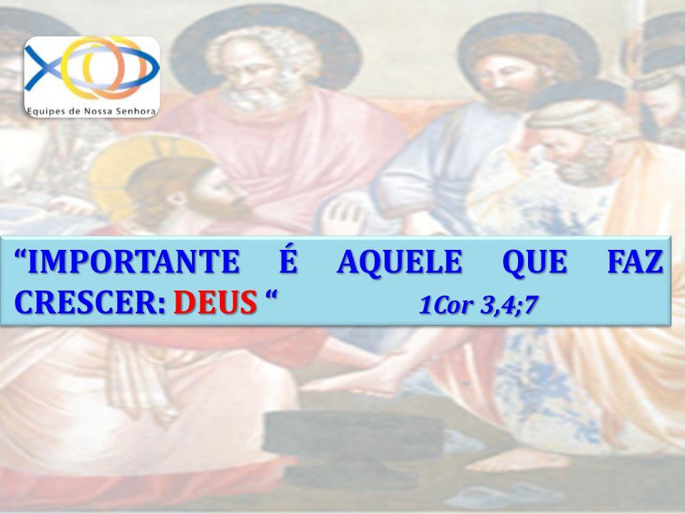 IMPORTANTE É AQUELE QUE FAZ CRESCER: DEUS 1Cor 3,4;7