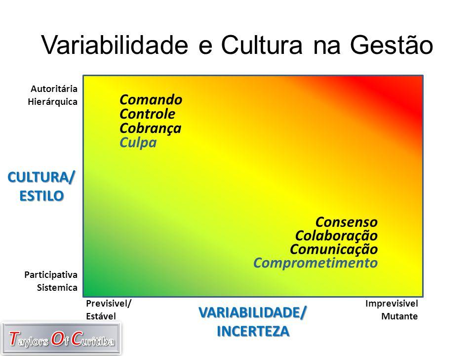 Variabilidade e Cultura na Gestão