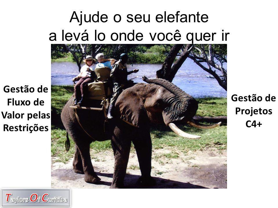 Ajude o seu elefante a levá lo onde você quer ir
