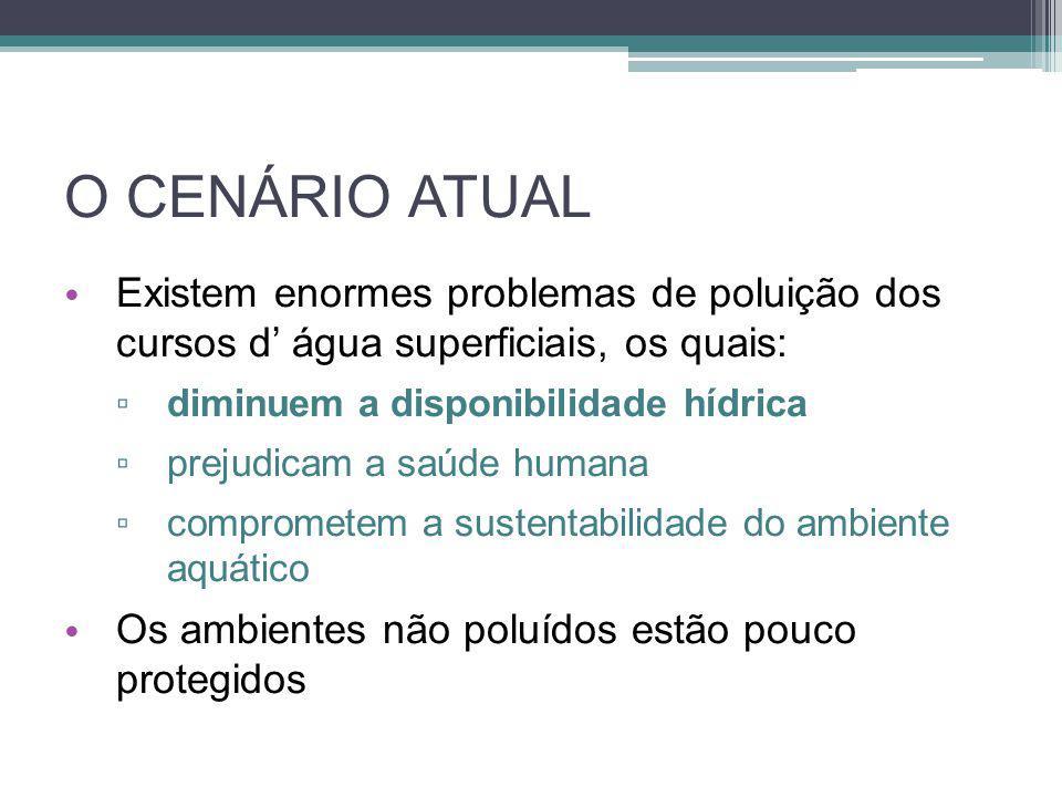 O CENÁRIO ATUAL Existem enormes problemas de poluição dos cursos d' água superficiais, os quais: diminuem a disponibilidade hídrica.