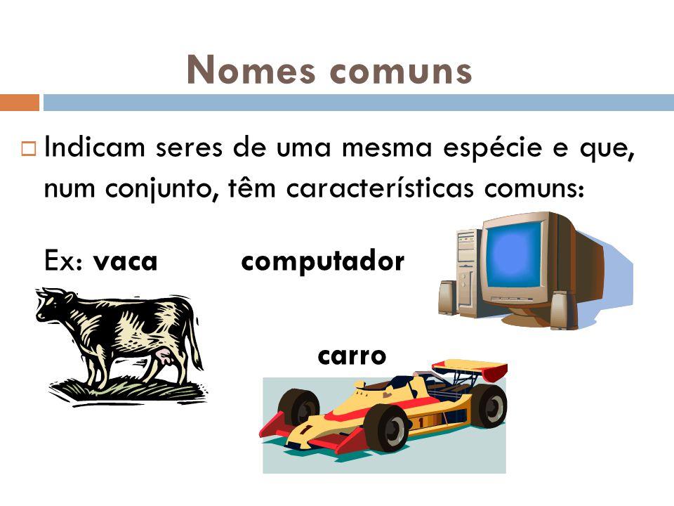 Nomes comuns Indicam seres de uma mesma espécie e que, num conjunto, têm características comuns: Ex: vaca computador.