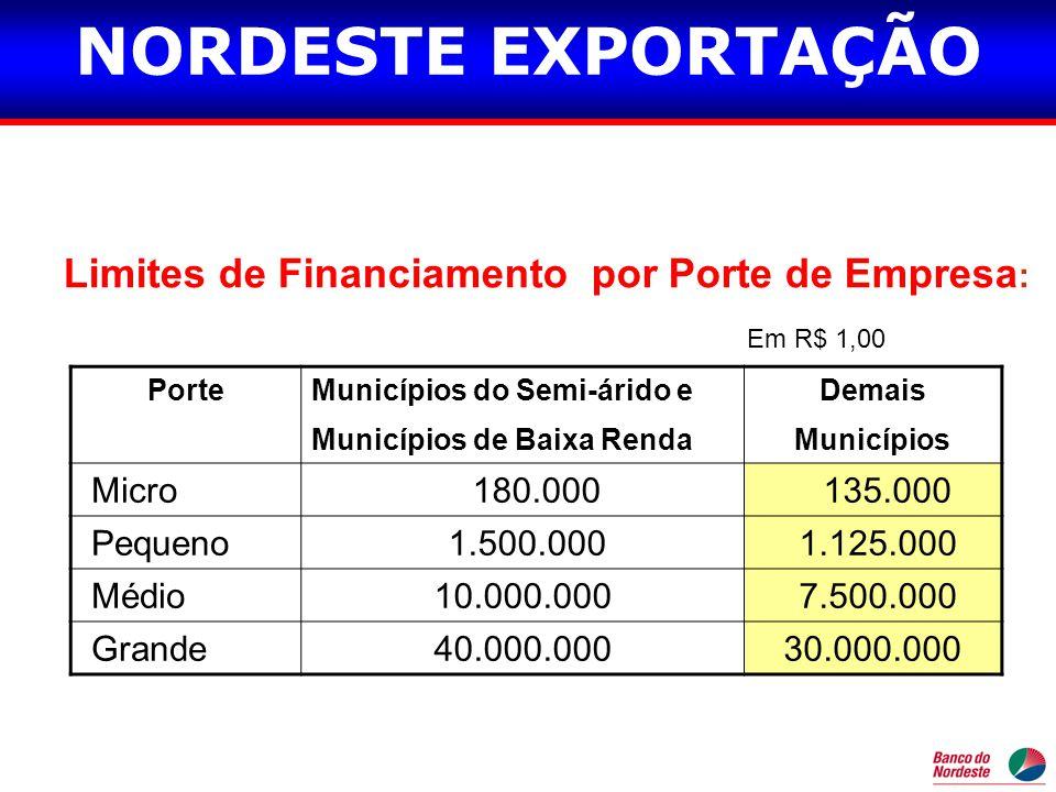 Limites de Financiamento por Porte de Empresa: