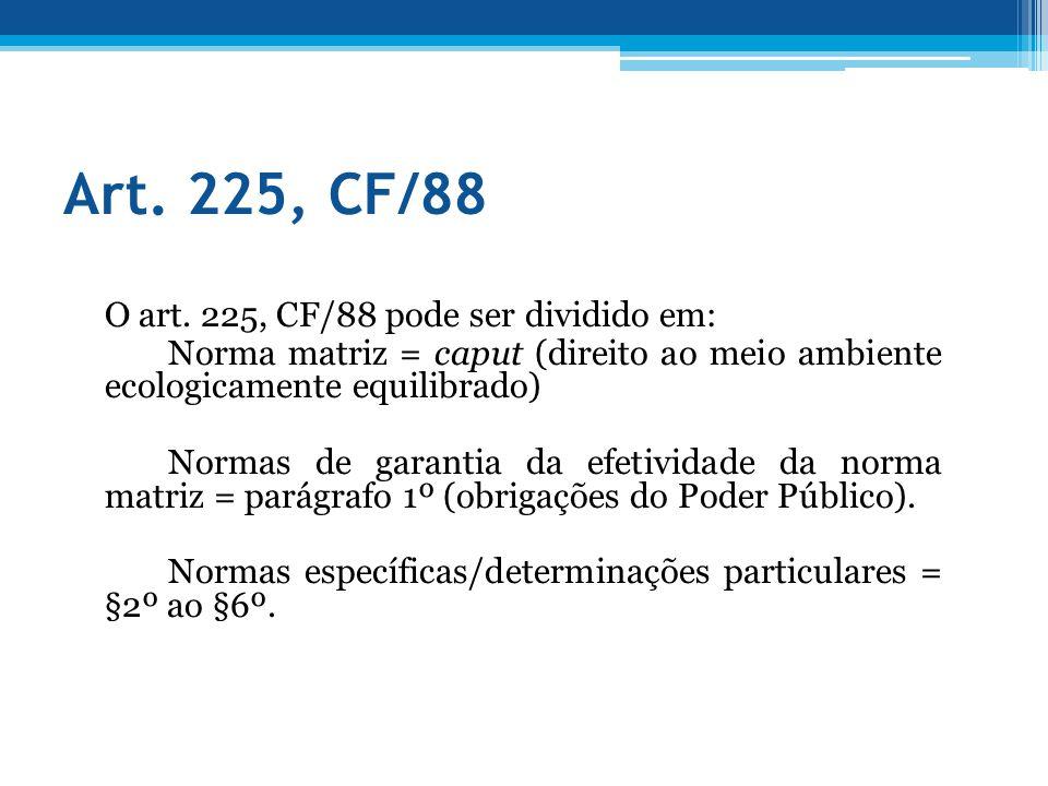 Art. 225, CF/88 O art. 225, CF/88 pode ser dividido em: