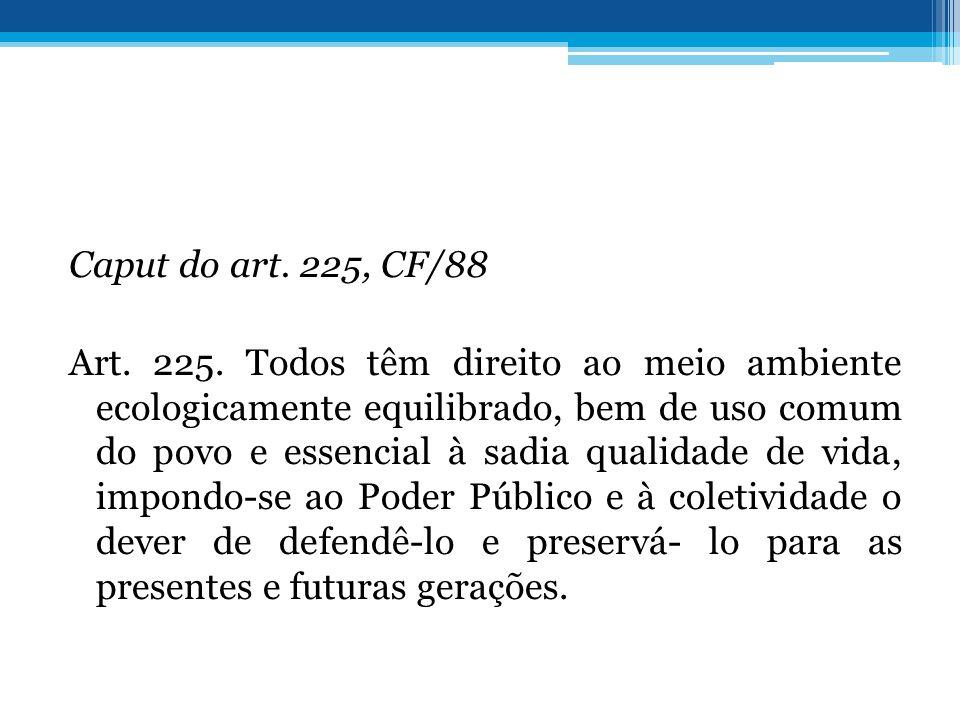 Caput do art. 225, CF/88