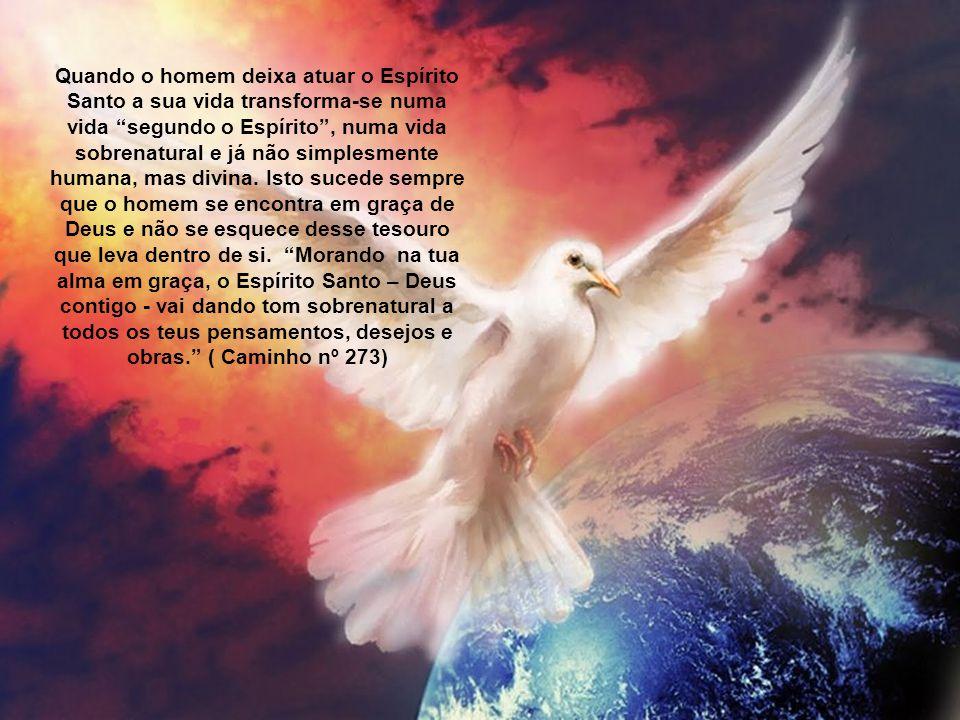 Quando o homem deixa atuar o Espírito Santo a sua vida transforma-se numa vida segundo o Espírito , numa vida sobrenatural e já não simplesmente humana, mas divina.