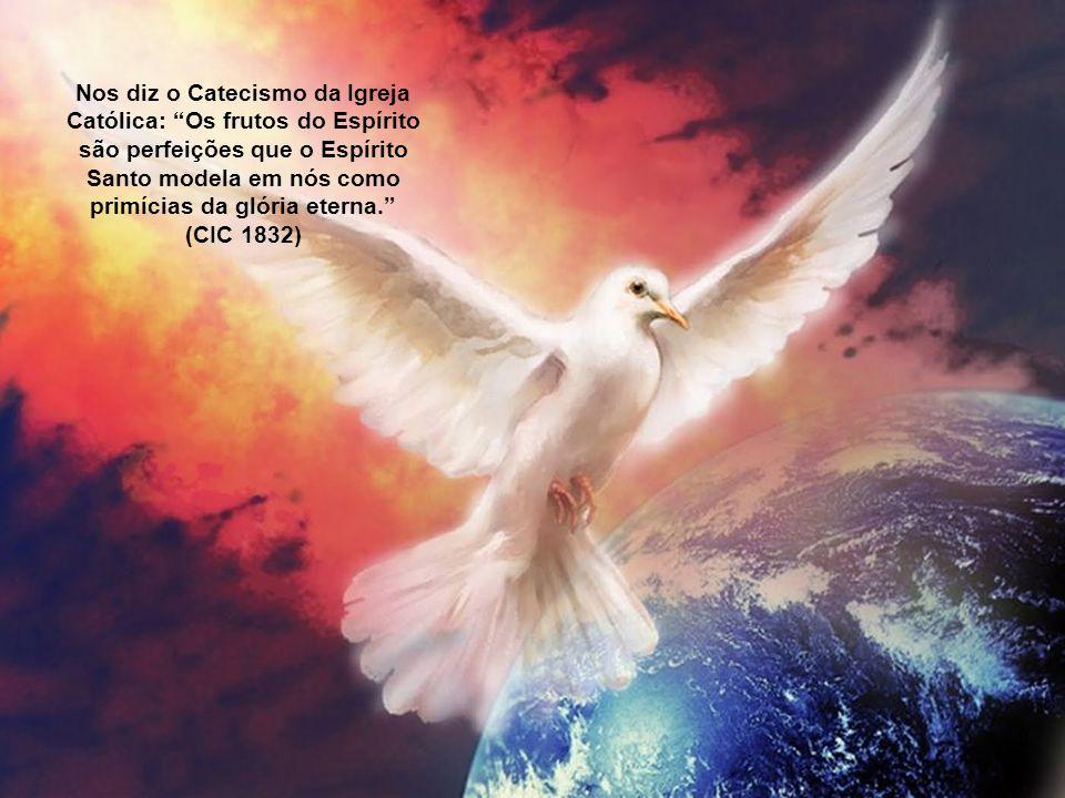 Nos diz o Catecismo da Igreja Católica: Os frutos do Espírito são perfeições que o Espírito Santo modela em nós como primícias da glória eterna. (CIC 1832)