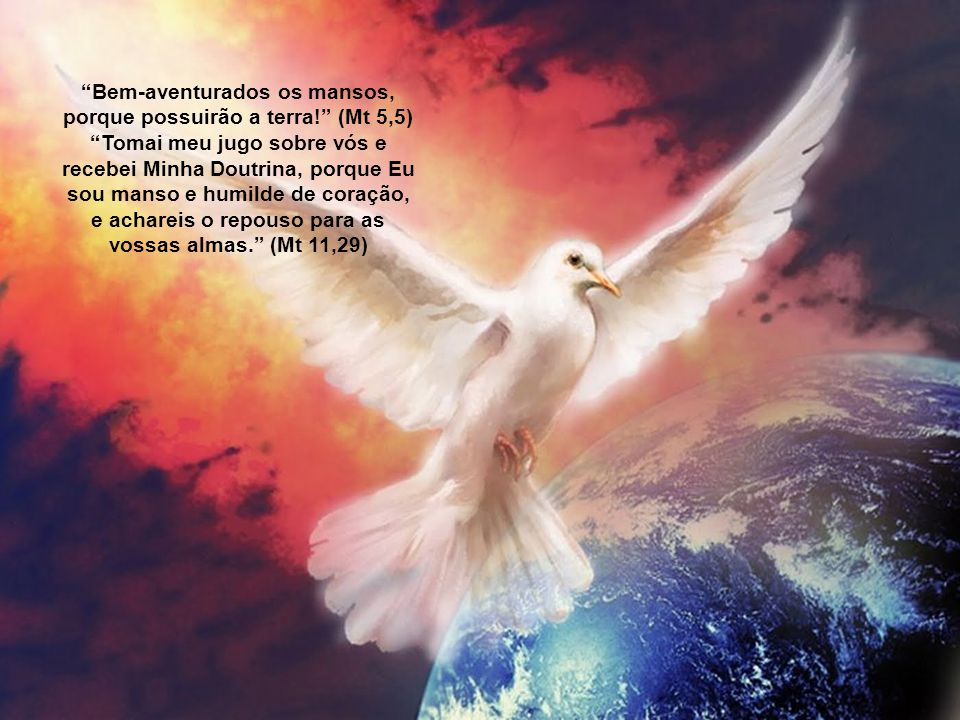 Bem-aventurados os mansos, porque possuirão a terra! (Mt 5,5)
