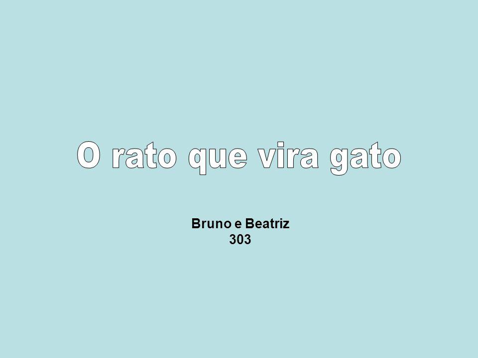 O rato que vira gato Bruno e Beatriz 303