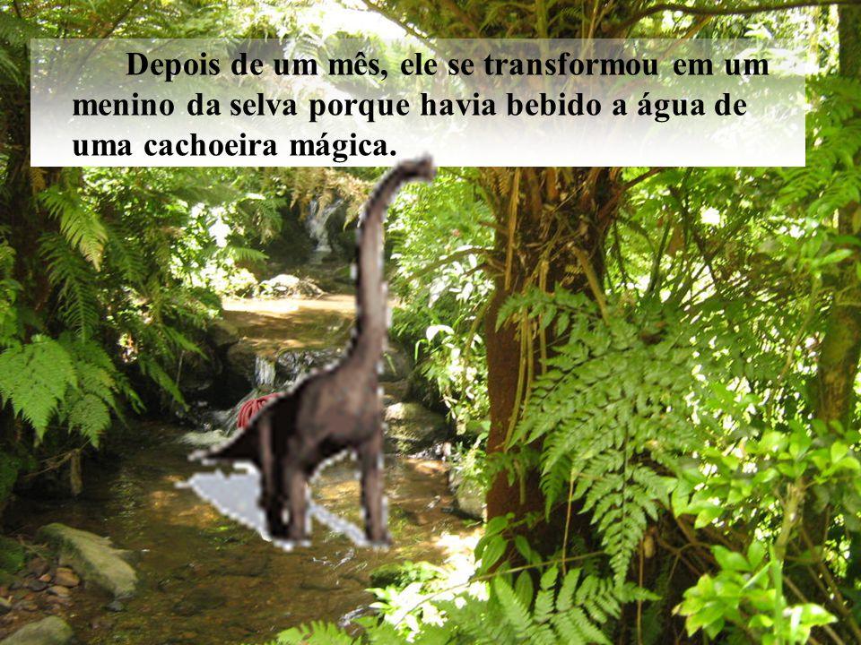 Depois de um mês, ele se transformou em um menino da selva porque havia bebido a água de uma cachoeira mágica.