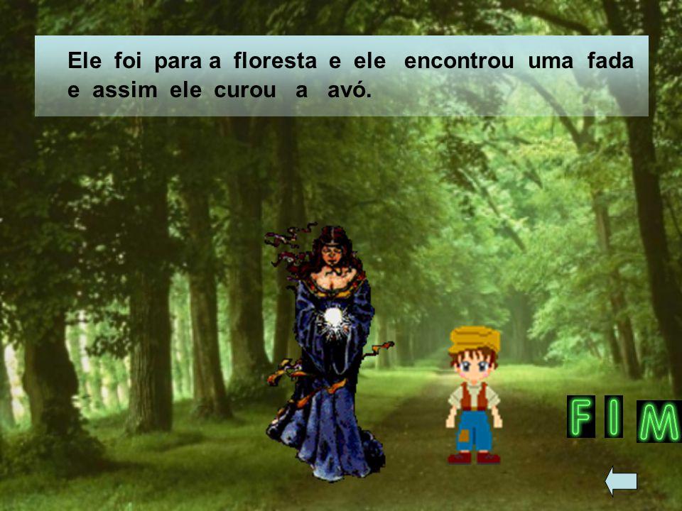 Ele foi para a floresta e ele encontrou uma fada e assim ele curou a avó.