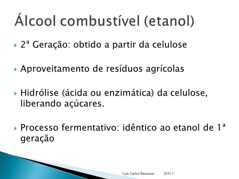 Álcool combustível (etanol)