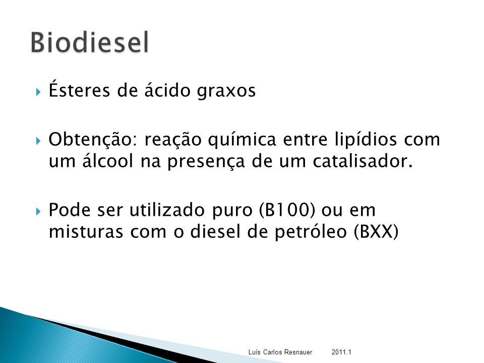 Biodiesel Ésteres de ácido graxos